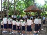 Trai huong dao 2011 (55)